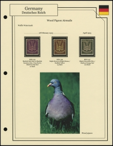 Wood Pigeon Airmails