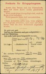 In German (rear)